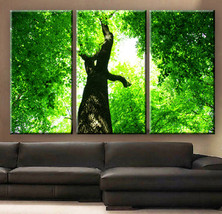 "Large 30x60  3 Panels framed 1.5"" depth Art Canvas Print  Tree Forest gr... - $119.00"