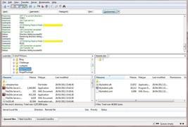 Professional FTP Client  & Server Software FTPS... - $9.79