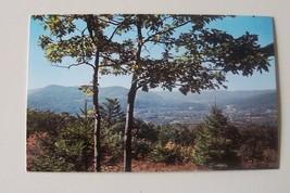 Mount Greylock Mohawk Trail Massachusetts MA Plastichrome Unused Postcard - $4.00