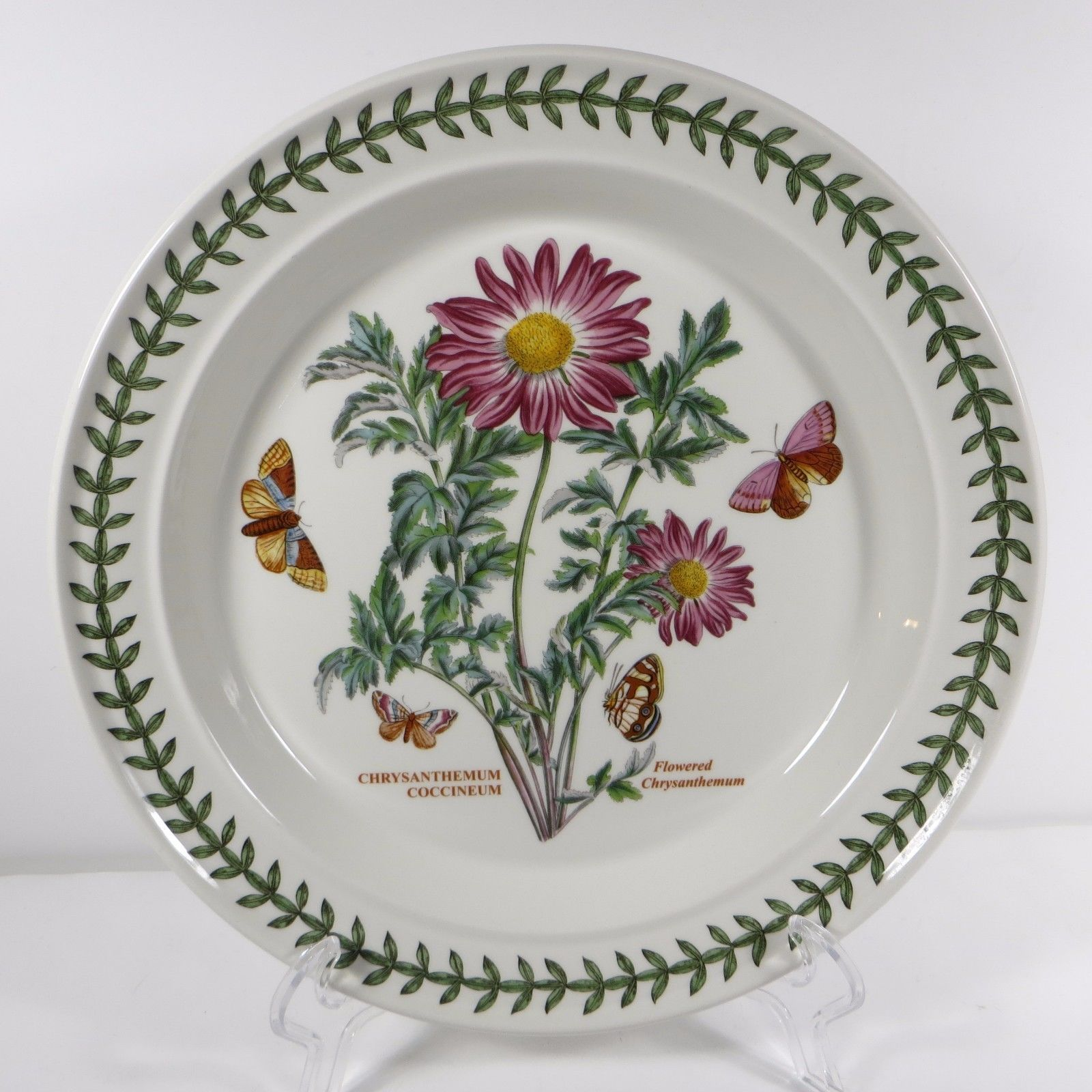 PORTMEIRION Botanic Garden Dinner Plate Flowered Chrysanthemum Coccineum  Flower
