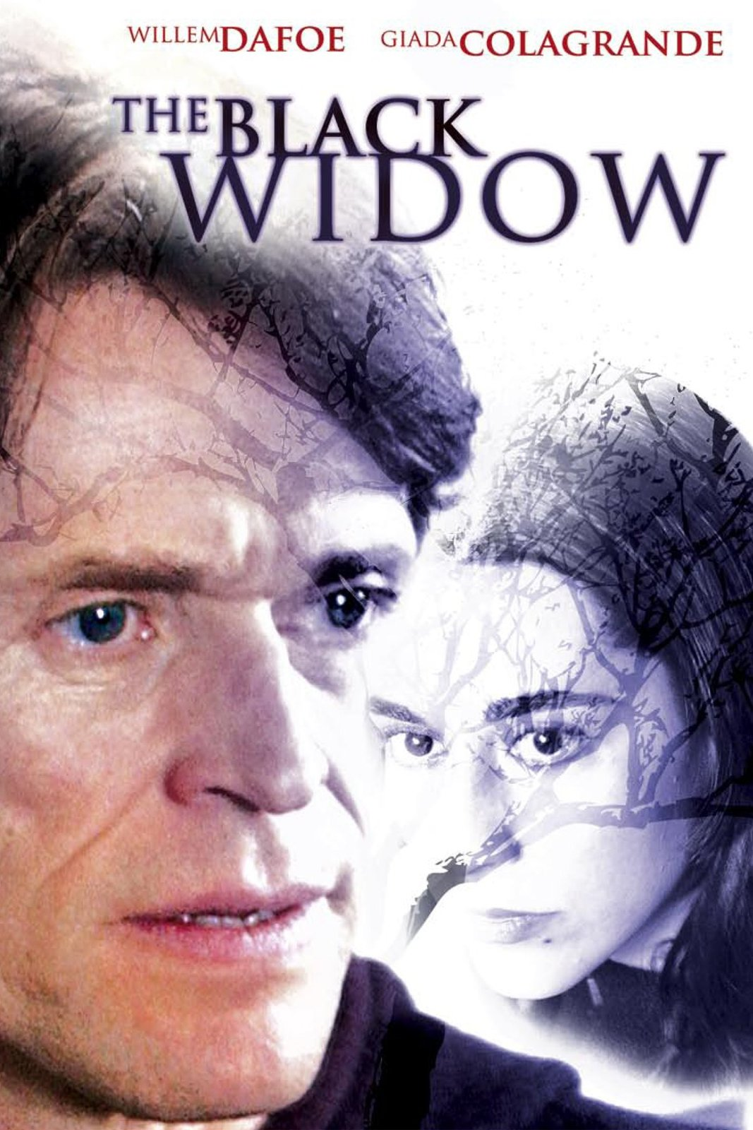 The Black Widow Dvd
