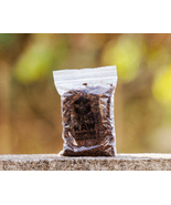 DrApis Raw Propolis 50g (1.7 oz), direct from beekeeper in Portugal - $12.24