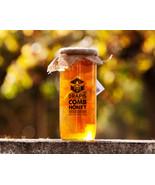 DrApis Comb Honey 1500g (1.5 Kg, 3.3 lb) pot jar, honeycomb honig from P... - $31.17