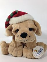 WishPets Plush Puppy JINGLE Big Eyes & Paws Brown Hound Dog 2006 Bean Ba... - $29.00