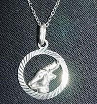 Capricorn Zodiac The Goat Pendant Charm Jewelry Silver - $19.15