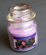 Mulberry Scented Candle in Glass Jar Purple Berry 3 oz NEW - $6.99