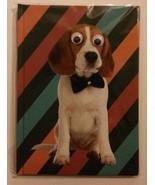 Dog Notebook / Journal Googly-Eyed BEAGLE hardcover 4x6 140pp Google eye... - $6.99