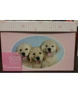 Pet Stickers Box 500 Dog Cat Kitten Puppy Rachael Hale NEW - $8.49