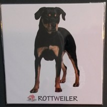 "DOG FRIDGE MAGNET Rottweiler 4"" Metal Refrigerator NEW - $4.99"