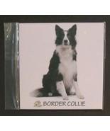 "DOG FRIDGE MAGNET Border Collie 4"" Metal Refrigerator NEW - $4.99"