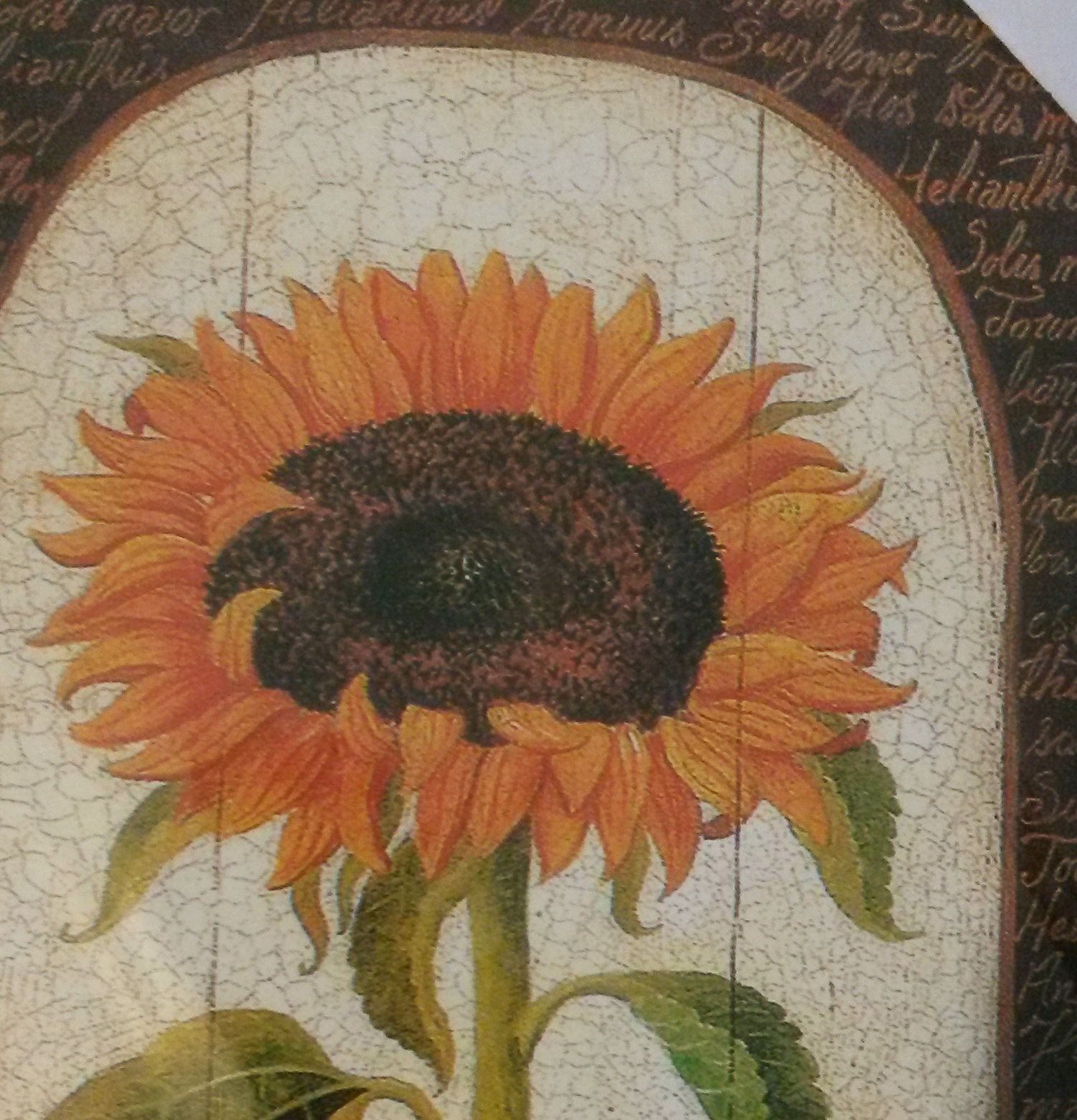 """SUNFLOWER Wood Wall Art, Flowers Country Hanging Plaque, Floral 16""""x7"""" NEW"""