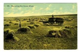 Harvesting Dry Grown Wheat Postcard Barkalow Bros - $10.89