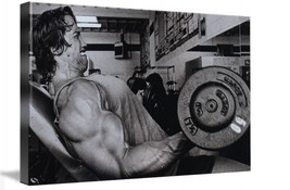 "Arnold Gym Wall Decor Framed Canvas Art Picture 12"" x 8"" Ready To Hang - $42.79"