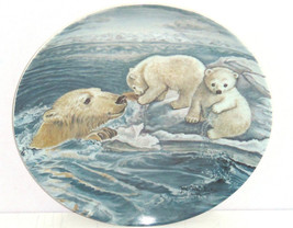 Polar Bears Baby Collector Plate Tender Coaxing Wildlife Hicks Knowles V... - $59.95