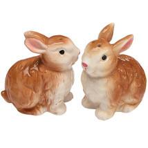 Adorable Brown Bunny Pair Salt And Pepper Shake... - $9.98