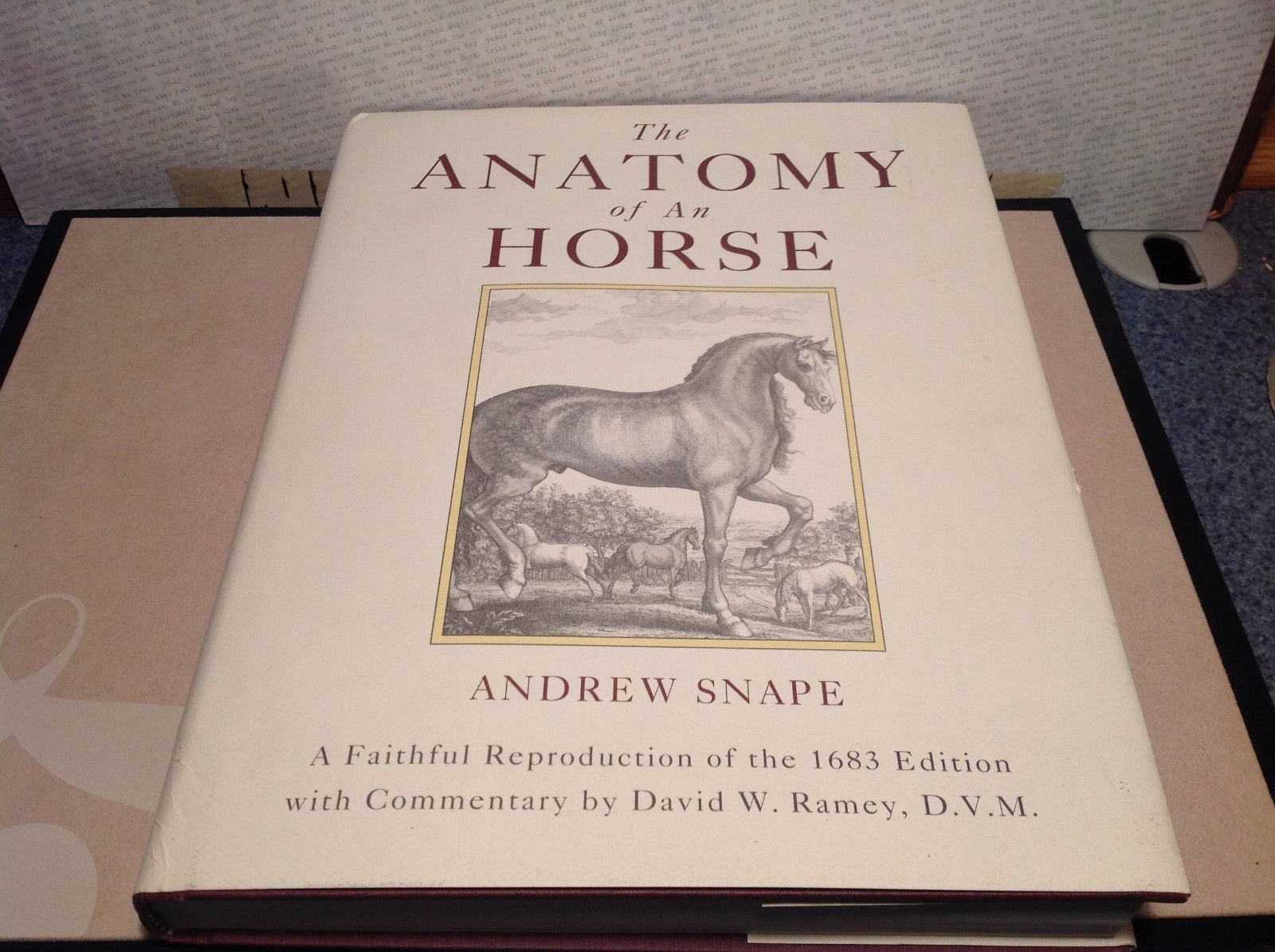 Anatomy Of A Horse Book