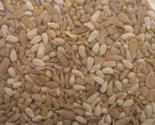 91p5hhgvk1l thumb155 crop