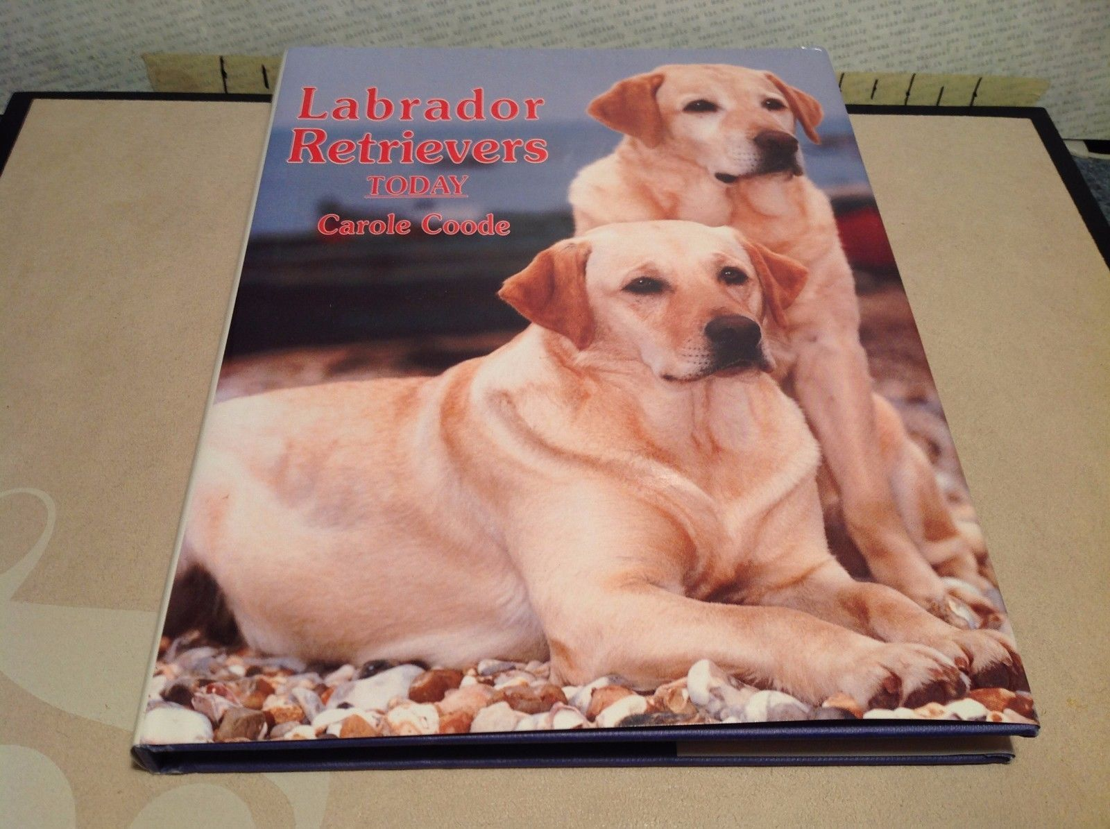 Labrador Retrievers Today Book by Carol Coode