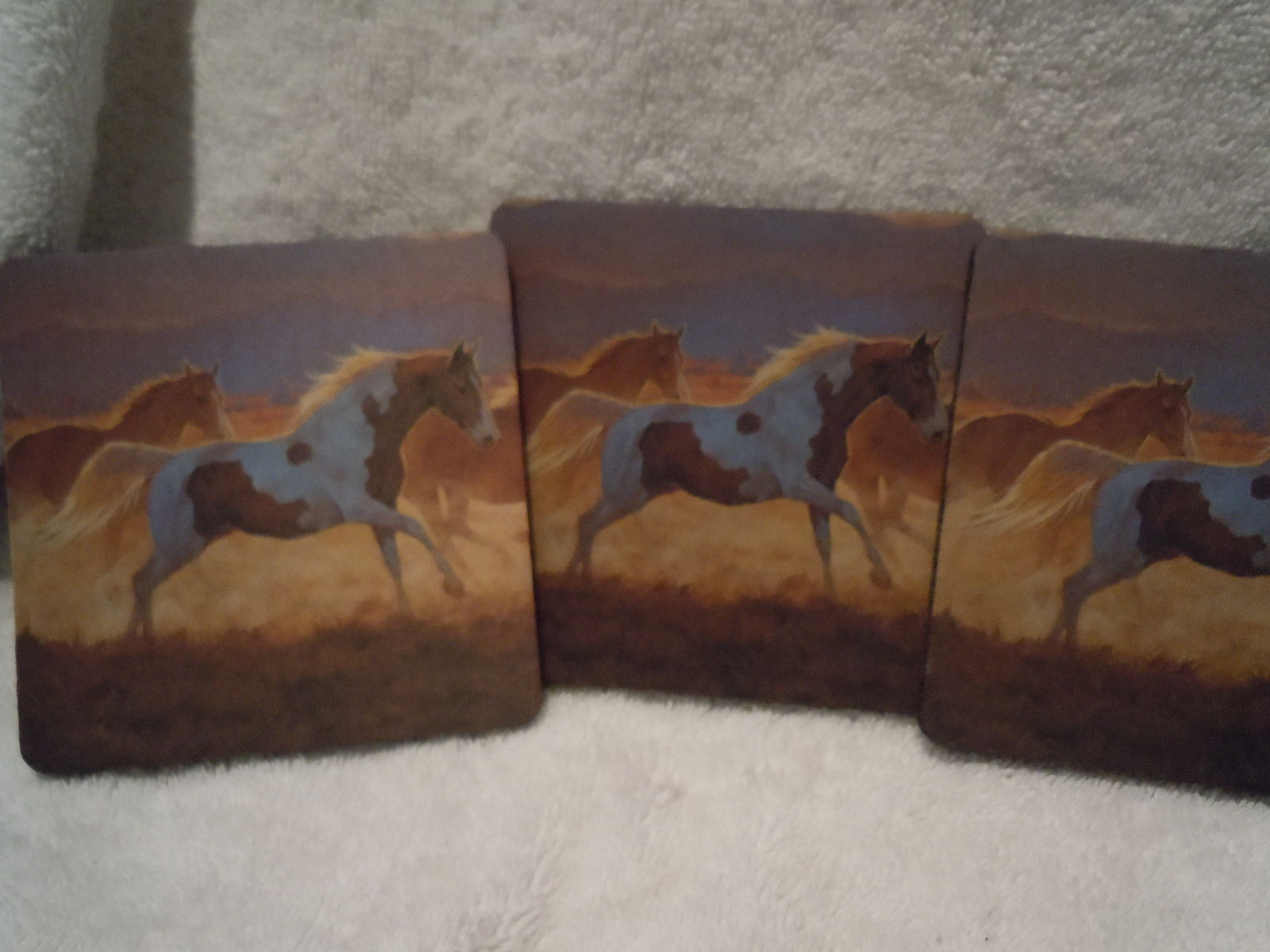 Wild Horses Coaster With Rubber Back Set of 4 New