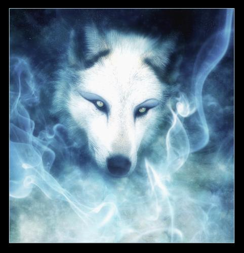 JAN 12 27x FULL COVEN FULL WOLF MOON FAMILY RESOLUTIONS MAGICK 925 Witch