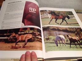 The Complete Book Of Horse Care by Tim Hawcroft image 3