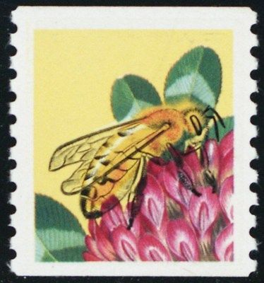 2281c, Mint NH 25¢ Bee Coil Black Litho Color Omitted ERROR APS Cert Stuart Katz