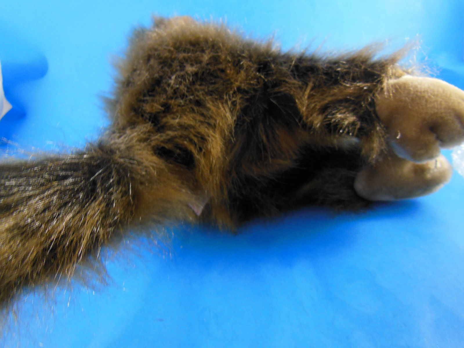 """Ty CHA CHA Brown Monkey 12"""" Plush 1998  in excellent clean condition SOOO Cute!"""