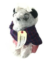 Eden Paddington Bear Aunt Lucy Darkest Peru Teddy Bear Plush Stuffed Ani... - $39.99