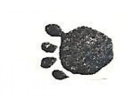 a Bear paw print Rubber Stamp  made in america free shipping bp1 - $9.46