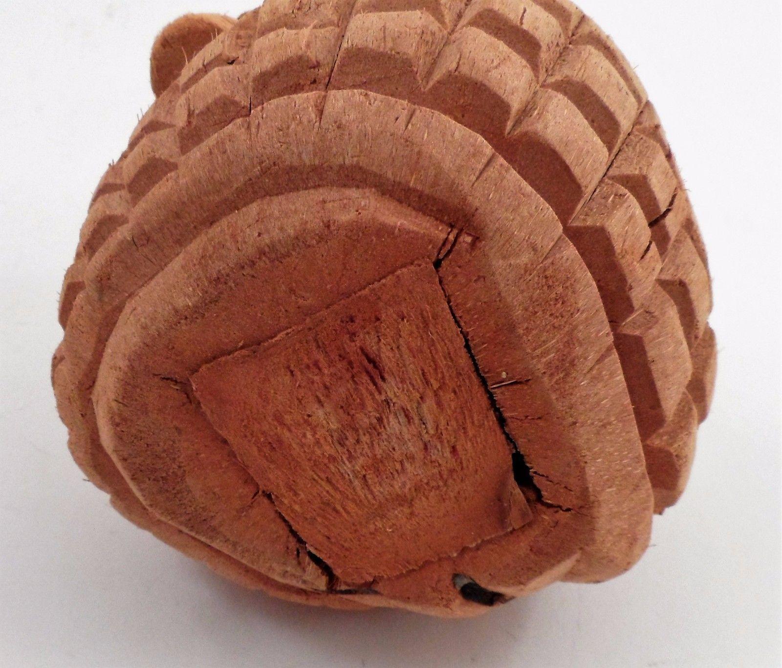 Tropical Polynesian Tiki Bar Decor Real Carved Coconut Alligator w/ Sharp Teeth