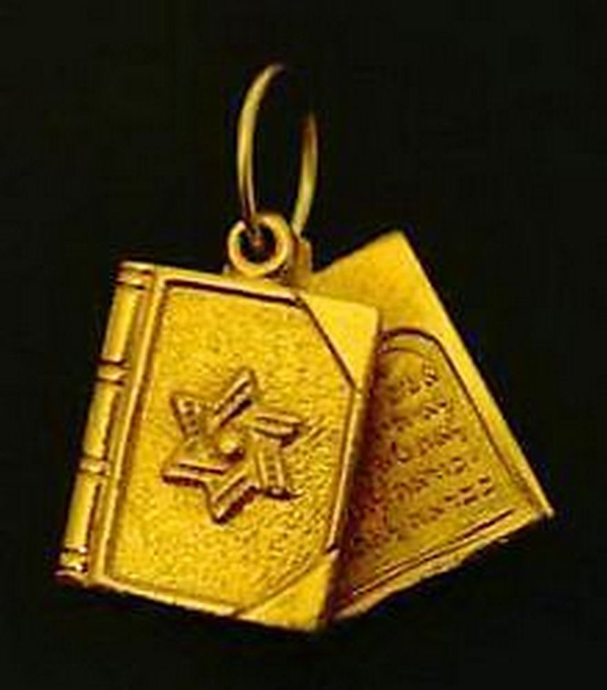 Star Of David 24kt gold plated Charm Jewish TORAH .925