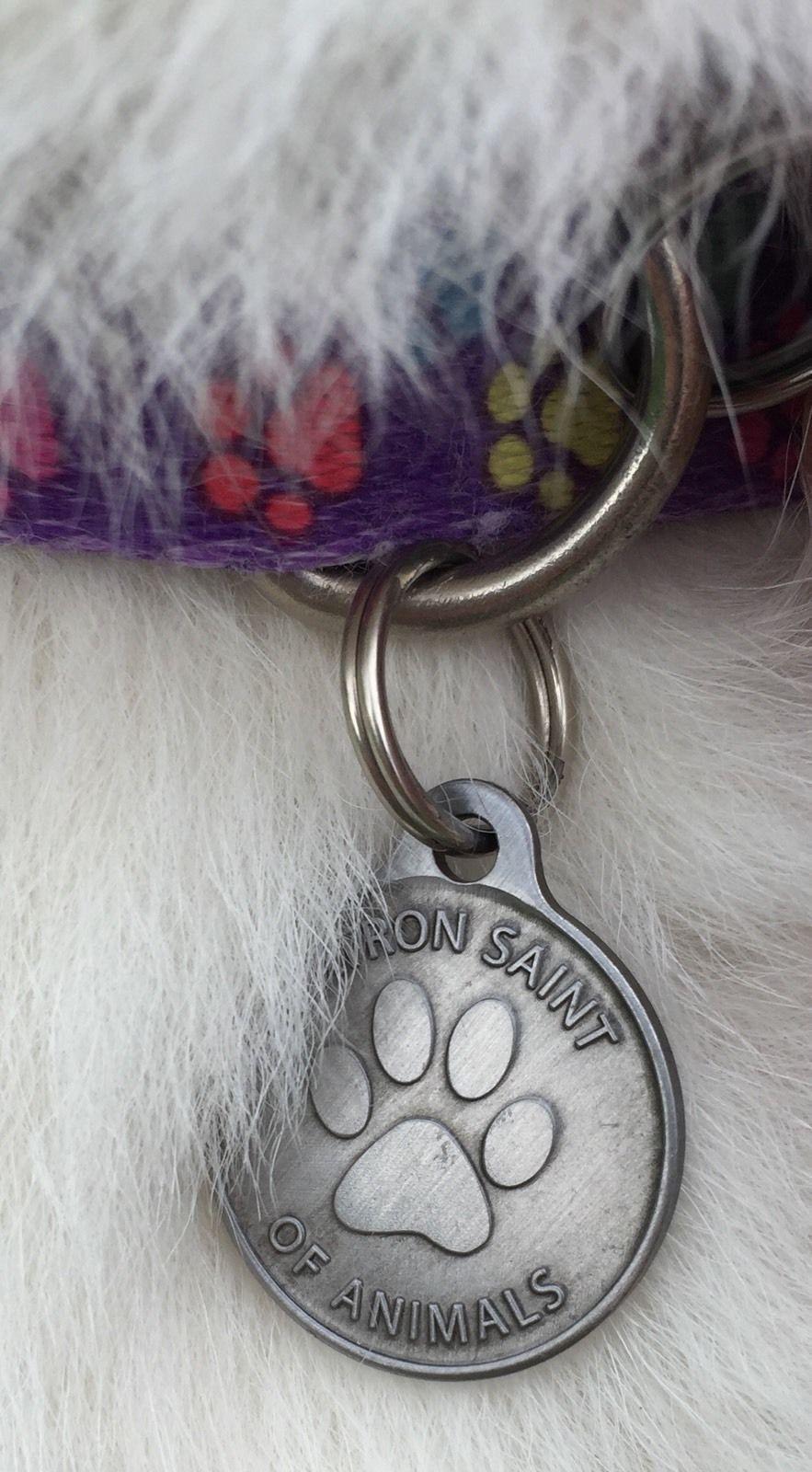 "Saint Francis Protect My Pet Patron Saint Of Pets Dog Tag 1"" Charm Pewter Color"