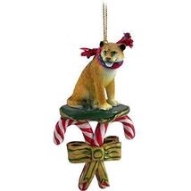 Conversation Concepts Lioness Candy Cane Ornament - $13.99