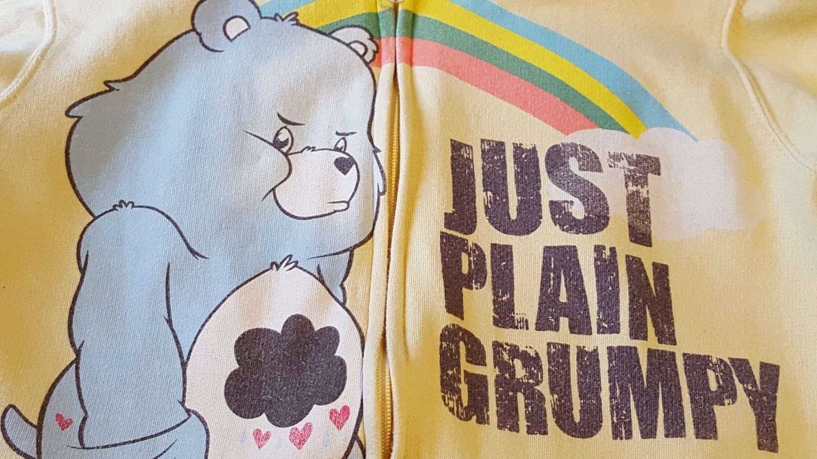 CARE BEARS RN 71868 - VINTAGE 2007 ~JUST PLAIN GRUMPY~ Women's Hoodie - Size: S