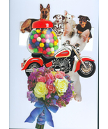 5 Delightful All Purpose Greeting Cards from Pa... - $6.00