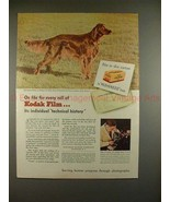 1945 Kodak Film Ad w/ Irish Setter - Rufus of Hollywood - $14.99