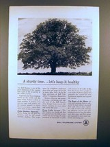 1950 Bell Telephone Ad - A Sturdy Tree, Keep it Healthy - $14.99