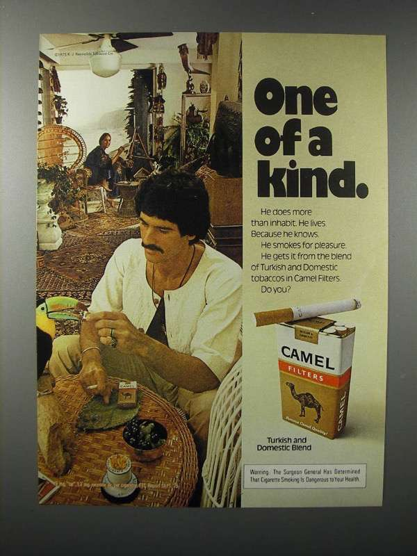 1976 Camel Cigarette Ad - One of a Kind - $14.99