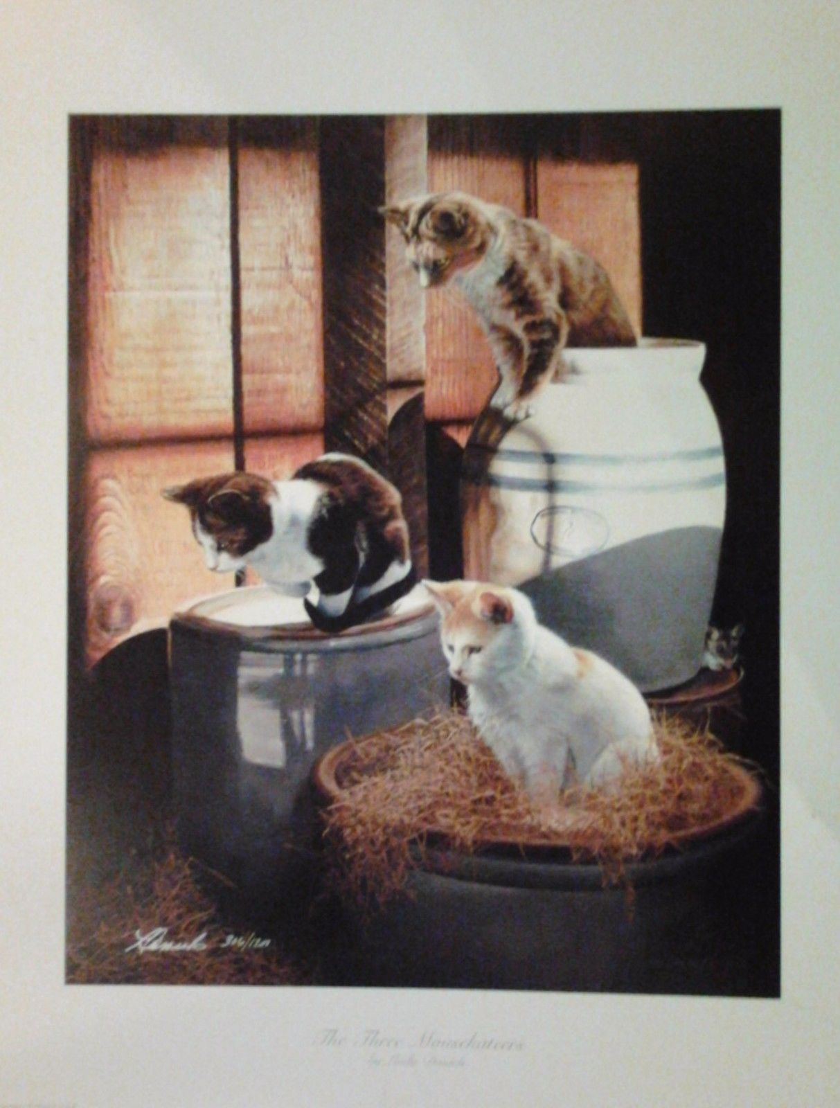 The Three Mousekateers By Linda Daniels