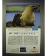 1996 Canon Solar Cells Ad - Hooker's Sea Lion - Wildlife - $14.99
