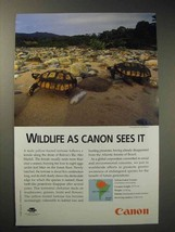 2001 Canon Ad - Yellow-footed Tortoise - $14.99