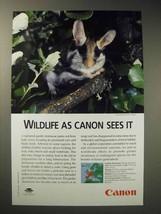 2001 Canon Ad - Garden Dormouse - $14.99