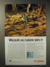 2001 Canon Ad - Long-tailed Ground-Roller - $14.99