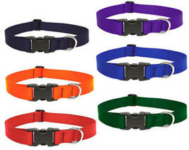 "Lupine Dog Collar 1"" Red Blue Green Purple Orange Black - $9.99"