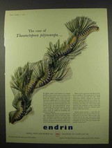 1956 Shell Endrin Ad - Case of Thaumetopoea Pityocampa - $14.99