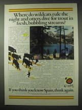1984 Spain Tourism Ad - Wildcats Rule the Night - $14.99