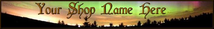 Northern Lights Custom Website Banner