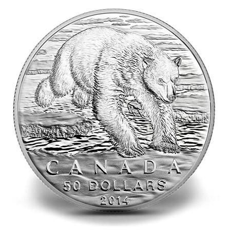 50 polarbear