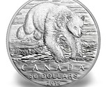 50 polarbear thumb155 crop