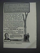 1913 Davey Tree Expert Ad - Examine Your Trees Now - $14.99